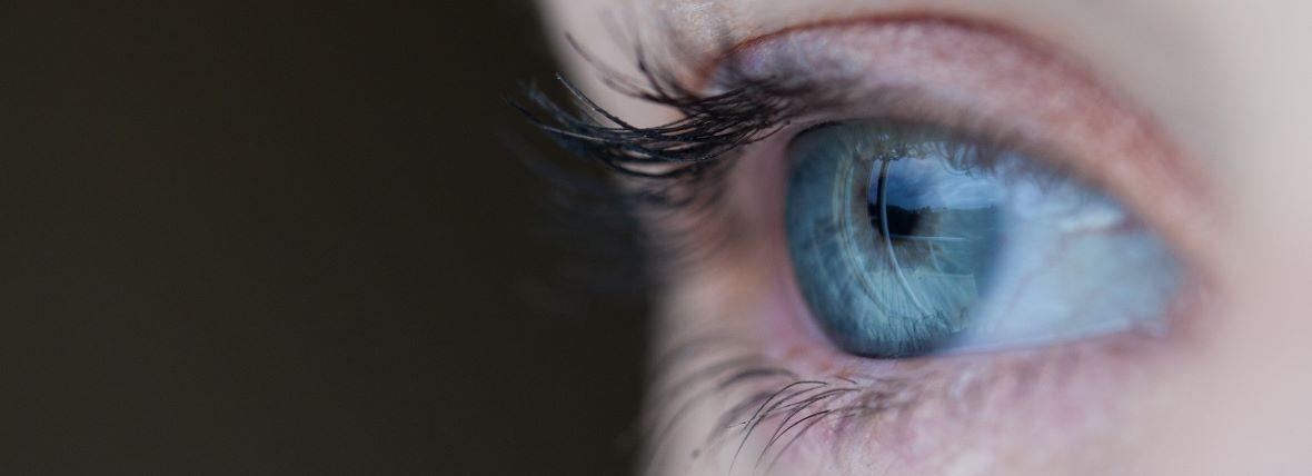 szemünk fénye a gyerek szeme